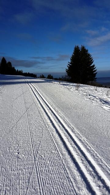 Pistes préparés qui annonce une belle journée de ski de fond